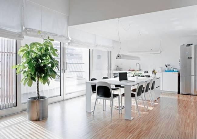 20 крутых вариантов дизайна гостиной-столовой