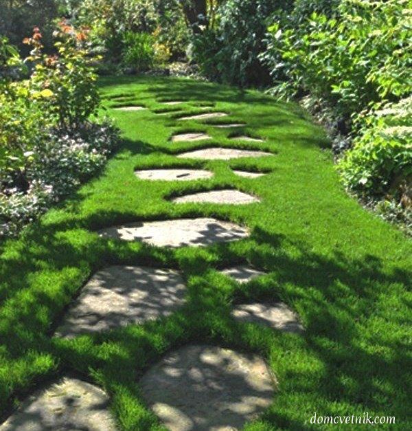 Садовые дорожки своими руками. 40 фотоидей