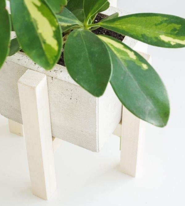 3 способа сделать деревянную подставку для комнатных растений
