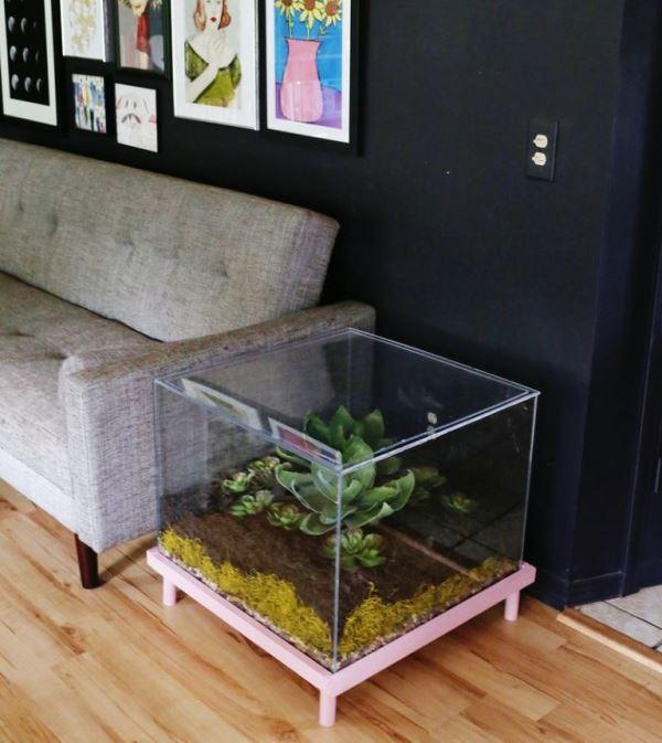 Кофейный столик с террариумом для суккулентов
