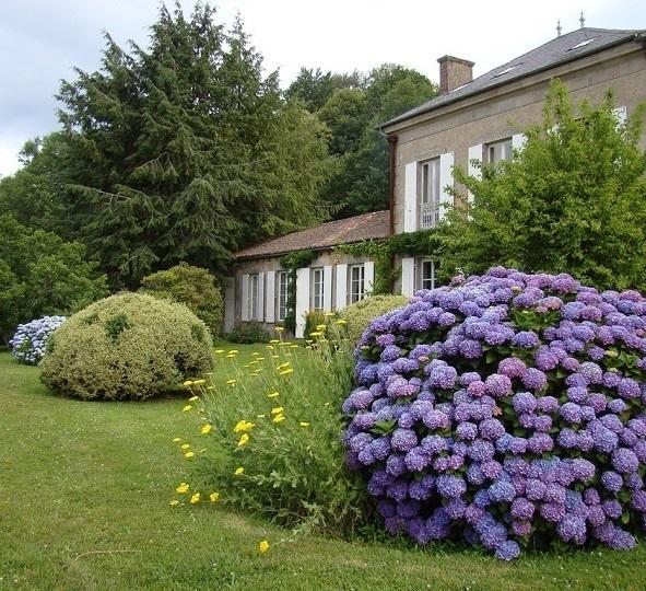 15 самых популярных цветущих кустарников для дачи