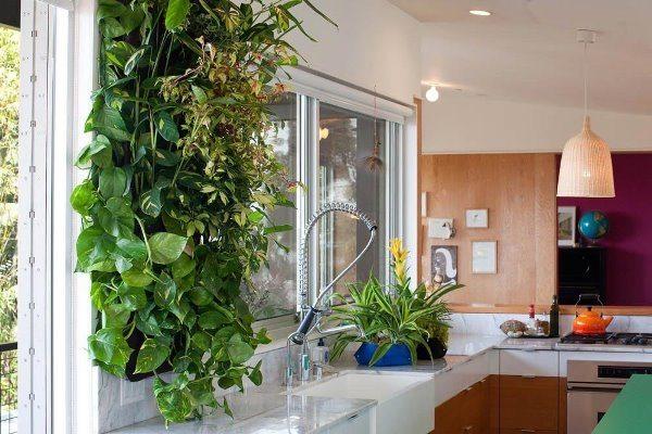 комнатные растения в интерьере квартиры, дизайнерские идеи интерьера, идеи дизайна интерьера, растения в интерьере, дизайн квартиры, дизайн интерьера дома
