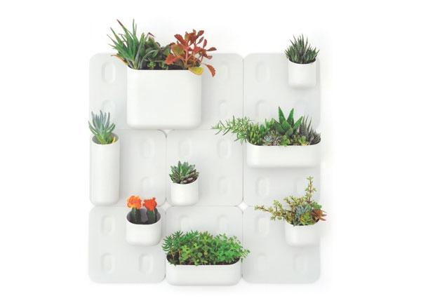 вертикальные сады в квартире, комнатные растения в интерьере квартиры, дизайнерские идеи интерьера, идеи дизайна интерьера, растения в интерьере, дизайн квартиры, дизайн интерьера дома